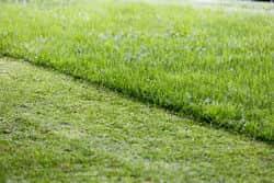 Hpuma lawn care
